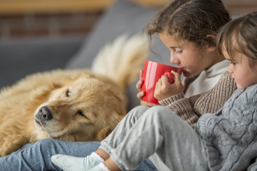 children drinking hot chocolate at home with dog