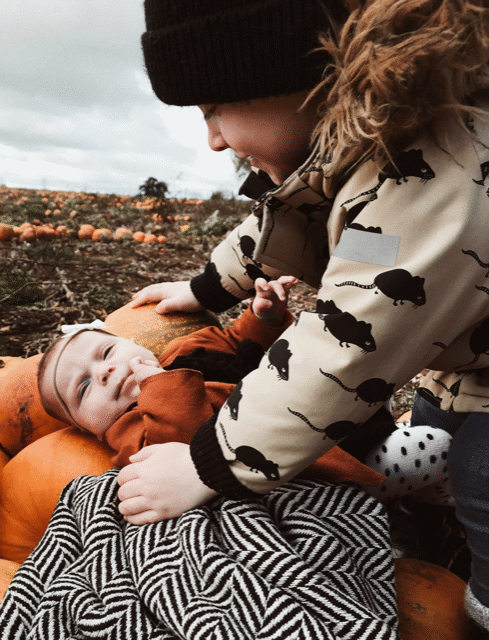 pumpkin picking in the fields